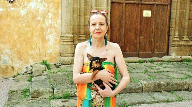 distributori alimenti animali sciacca, Agrigento, Cronaca