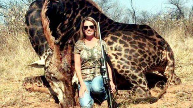 foto social giraffa cacciatrice, Tess Thompson Talley, Sicilia, Società