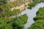 """Palermo, un fiume di rifiuti nell'Oreto. L'obiettivo del Fai: """"Aiutateci a salvarlo"""""""