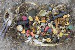 Documentari e film sulla tutela dell'ambiente: festival internazionale a San Vito Lo Capo