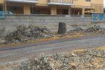 """Alberi tagliati a Caltanissetta, il Wwf: """"Abbattimenti senza autorizzazione"""""""