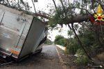 Vento, albero cade su un Tir sulla Messina-Catania: 2 feriti e traffico in tilt
