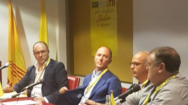 coldiretti trapani, Antonio Rallo, Trapani, Economia