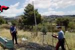 Scoperto mentre appiccava un incendio: pregiudicato arrestato ad Agrigento