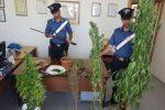 """Ragusa, continua l'operazione """"Pozzallo sicura"""": altri 4 arresti"""