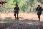 Irreperibile da un mese, i carabinieri lo scovano in una baracca nel bosco a Ravanusa