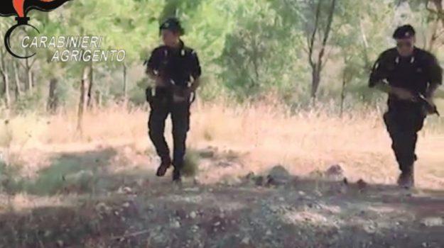 uomo nascosto nel bosco, Agrigento, Cronaca