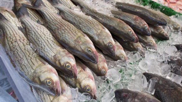 Finanziamenti mercato ittico sciacca, Agrigento, Economia