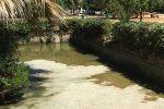 """Lavori alla fontana di Villa Sperlinga a Palermo, la denuncia di M5s: """"Pesci agonizzanti"""""""