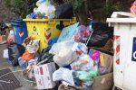 Messina, rifiuti e topi in contrada Serra: le immagini della discarica abusiva