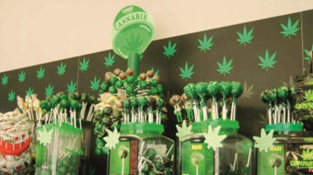 negozi cannabis san cataldo, Caltanissetta, Cronaca