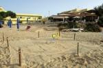 Lampedusa, una tartaruga Caretta caretta fa il nido sulla spiaggia della Guitgia