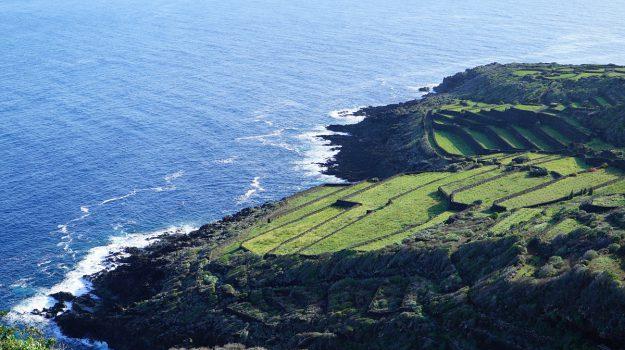 energia pulita Pantelleria, Trapani, Economia