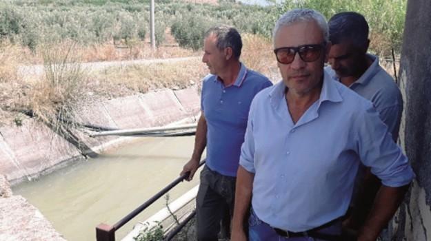 piana di catania siccità, Catania, Economia