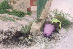Non c'è pace a Licata: schiamazzi e atti di vandalismo a ogni ora della notte