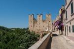 Prima guida turistica Torre di Palme