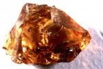 Uno dei campioni di ambra trovati in Spagna e analizzati (fonte: M. Murillo-Barroso and Alvaro Fernandez Flores)