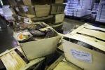 Guerra capesante: Coldiretti, in gioco 27 mln di export
