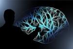 La culla del pessimismo risiede in una regione del cervello denominata nucleo caudato: la sua stimolazione porta a sovrastimare i costi ai danni dei benefici di una scelta (fonte: Pixabay)
