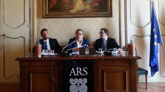 cani, disegno di legge ars, randagismo sicilia, Sicilia, Politica