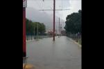 Temporale estivo e a Palermo si allaga anche la linea del tram