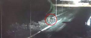 Un frame tratto dai video della polizia che riprendono le rapine della banda agli omosessuali, Vittoria