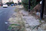 Erbacce e rifiuti da via Libero Grassi a via Eugenio L'Emiro a Palermo: le foto