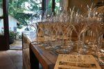 Tra degustazioni e convegni aperta la 38esima edizione di ViniMilo
