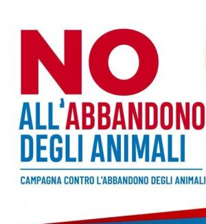 A Catania una campagna social contro l'abbandono degli animali