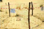 Nate sulla spiaggia di Ispica 66 tartarughe Caretta Caretta