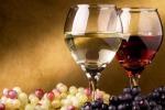 Giunta Marche, 3 milioni euro per promozione vino all'estero