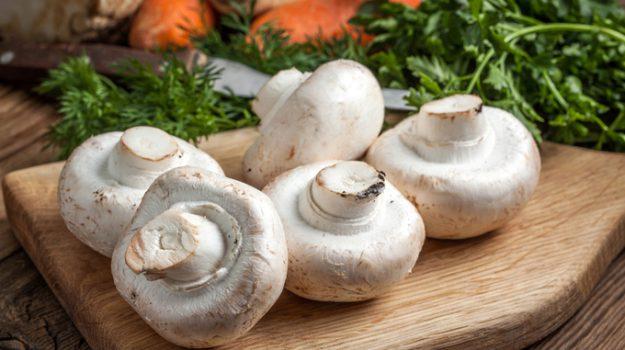funghi champignon diabete, Sicilia, Società