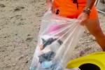 Lattine, carte e bottiglie: mare che si affaccia sullo Stretto di Messina invaso dai rifiuti