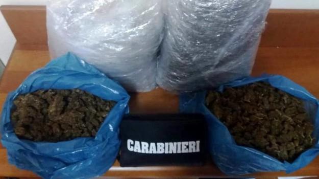 marijuana catania, Catania, Cronaca