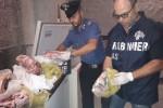 Cibo in cattivo stato, sequestrati 160 kg di alimenti in un ristorante a Ustica