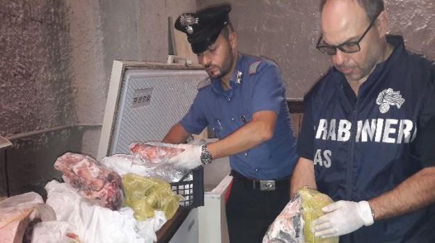 sequestro alimenti ustica, Palermo, Cronaca