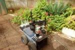 Robat, il robot che si orienta in modo autunomo nello spazio utilizzando gli ultrasuoni (fonte: Eliakim et al.)
