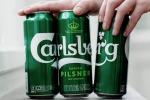 Carlsberg, colla invece di anelli plastica per lattine birra