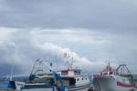Finito il fermo pesca in tutto l'Adriatico