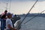 Da lunedì fermo biologico pesca per compartimento Roma