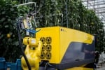 Il robot Sweeper durante i test (fonte: Research Station for Vegetable Production at St. Katelijne Waver)