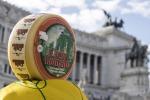 Pecorino romano: Csa lancia allarme, eccedenza record