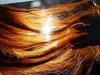Alle radici dei capelli scoperti recettori olfattivi, possibile chiave per future armi contro la calvizie (fonte: Shock2006, Flickr)