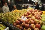 Medici a Terra Madre, guerra a falsi miti e diet industry
