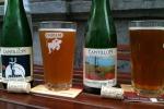 Riscaldamento globale minaccia la birra belga 'lambic'