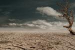 Scoperte le tracce di un riscaldamento glonale avvenuto 56 milioni di anni fs (fonte: Pixabay)
