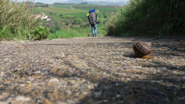 Antica trasversale Sicula, Ragusa, Trapani, Cultura