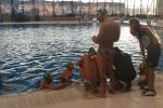 Successo dell'Ortigia contro la Lazio: partita equilibrata ma nervi tesi