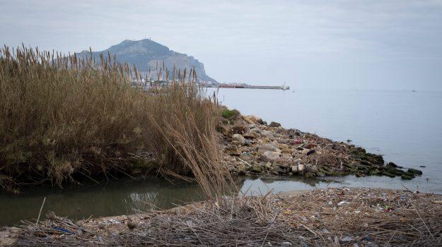oltreoreto fiume palermo, Palermo, Cultura