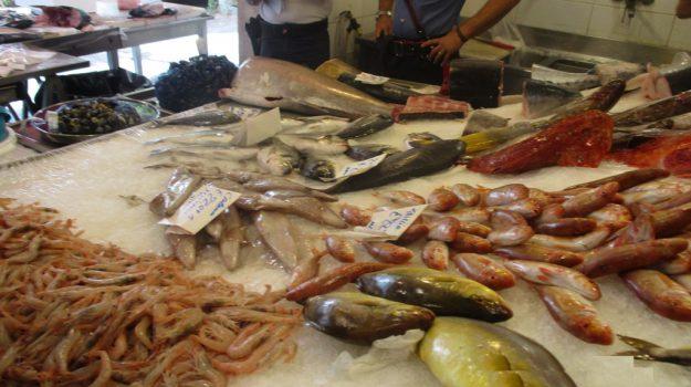 sequestri a pescherie di Palermo, Palermo, Cronaca